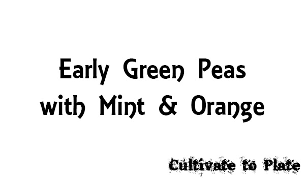Early Green Peas with Mint and Orange
