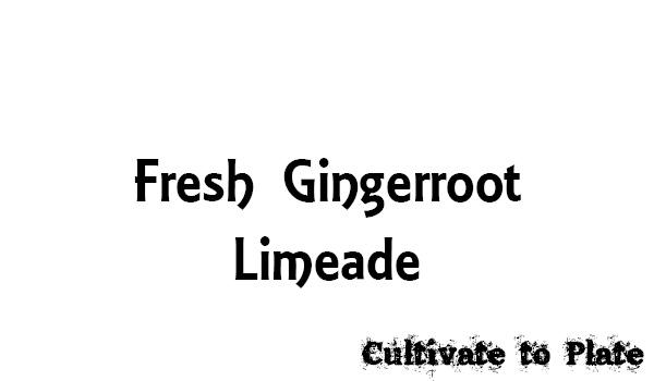 Fresh Gingerroot Limeade