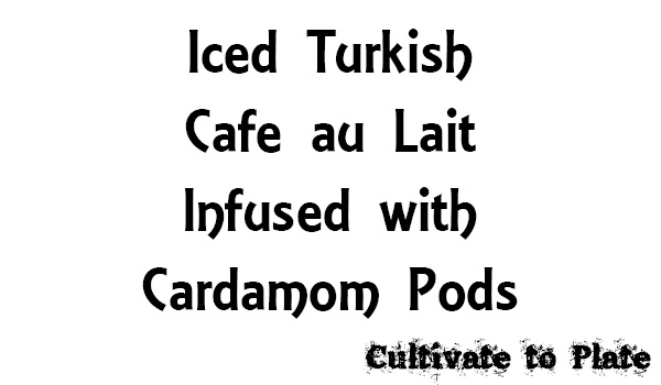 Iced Turkish Cafe au Lait Infused with Cardamom Pods