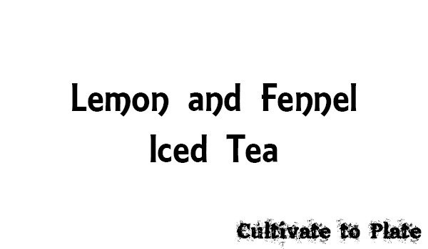 Lemon and Fennel Iced Tea