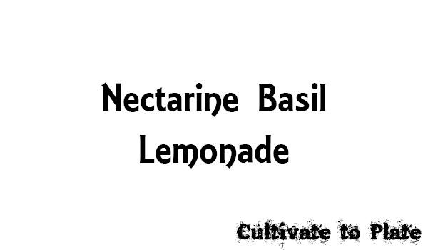 Nectarine Basil Lemonade