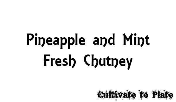 Pineapple and Mint Fresh Chutney