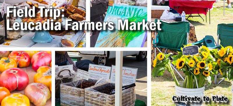 Field Trips: Leucadia Encinitas Farmers' Market