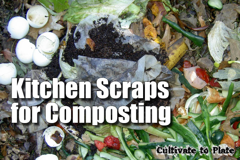 Kitchen Scraps for Composting | Cultivatetoplate.com